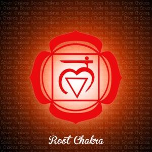 learn to activate your first chakra