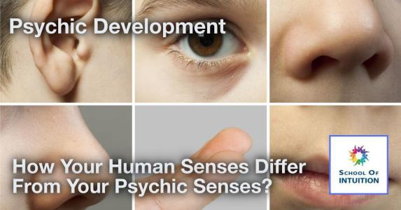 learn about special senses other than the 5 human senses