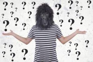 what is monkey mind